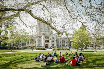 campus with students sitting on grass under tree